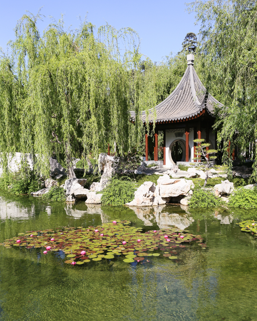 Chinese Garden A Photo From Guangdong South: The Huntington Library In San Marino